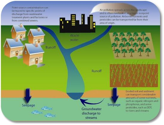 pollution research paper